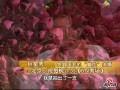 视频:李亚鹏向王菲求婚细节大爆料