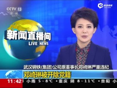 武钢原董事长被开革党籍