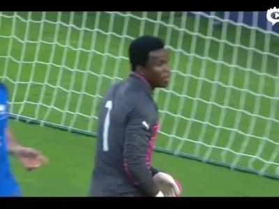 法国3-2喀麦隆