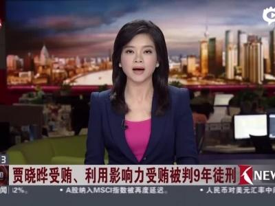 贾晓晔被判有期徒刑9年