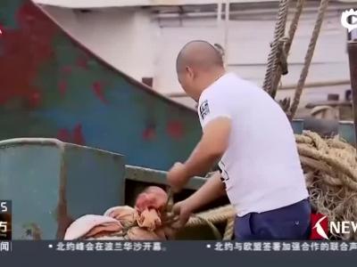 """福建:启动Ⅱ级响应  严防""""尼伯特""""强风暴雨"""