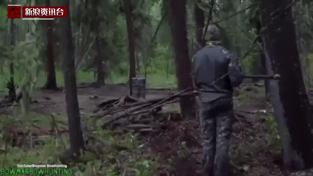 英男子标枪残杀黑熊后狂喜 遭动物保护人士谴责