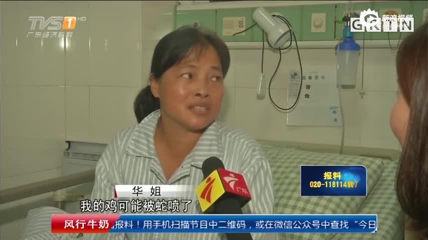 广东女子吃鸡脚 离奇中蛇毒险失明