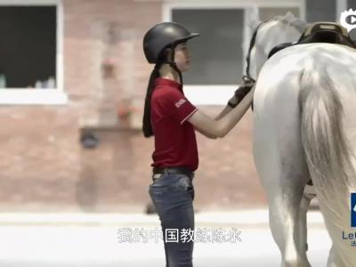 视频-美女小骑手申晴的马术梦