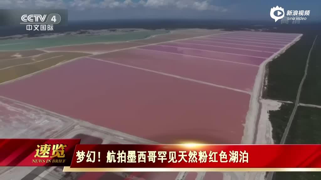航拍墨西哥罕见天然粉红色湖泊