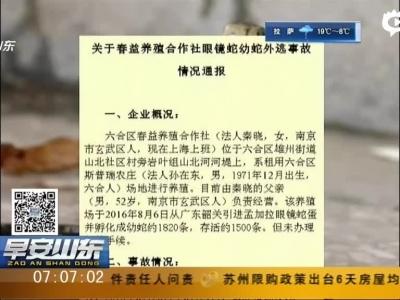 南京:养殖场50余条眼镜蛇出逃  官方准备血清