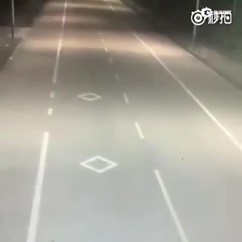 监拍老汉骑车遇车祸身亡 凶手居然是条狗