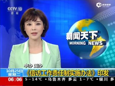 中办 国办:《信访工作责任制实施办法》印发