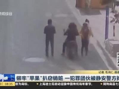 静安警方捣毁一条龙扒窃团伙