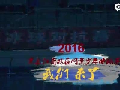 2016黑龙江省城区间青少年冰球赛