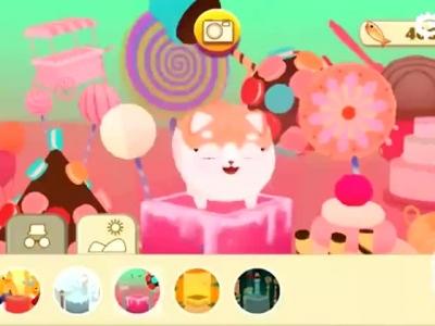 《猫小盒2》玩法视频