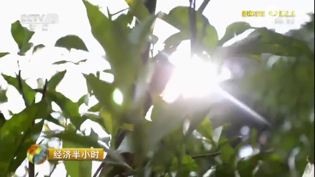 湖南贫困县5年修不通63公里路 央视:简直打脸