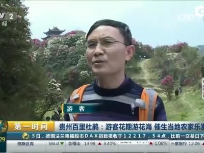 [第一时间]贵州百里杜鹃:游客花期游花海 催生当地农家乐发展
