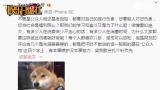 视频:郑爽再怼网友黑评 称有本事嫉妒没本事努力
