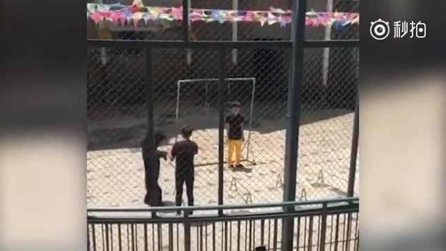 福州动物园狗熊表演失败被踢