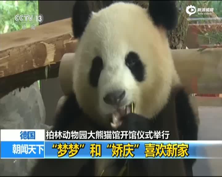 德国:柏林动物园大熊猫馆开馆仪式举行 动物园园长——开馆仪式是一场