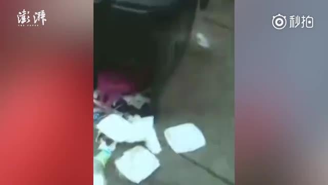 将女婴扔进垃圾桶的未婚妈妈已找到:涉嫌遗弃罪