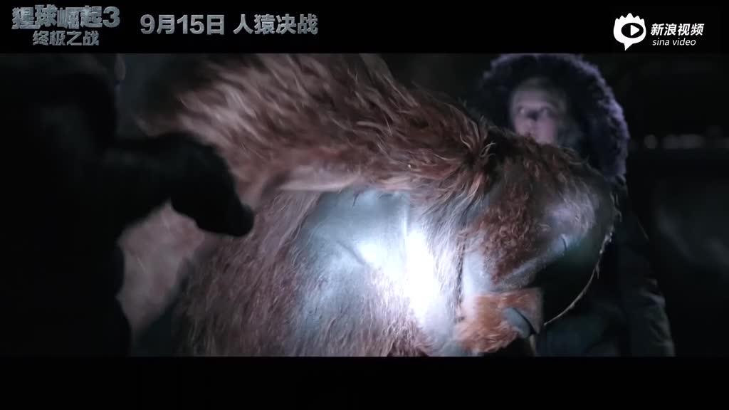 《猩球崛起3》小坏猿与毛里斯片段