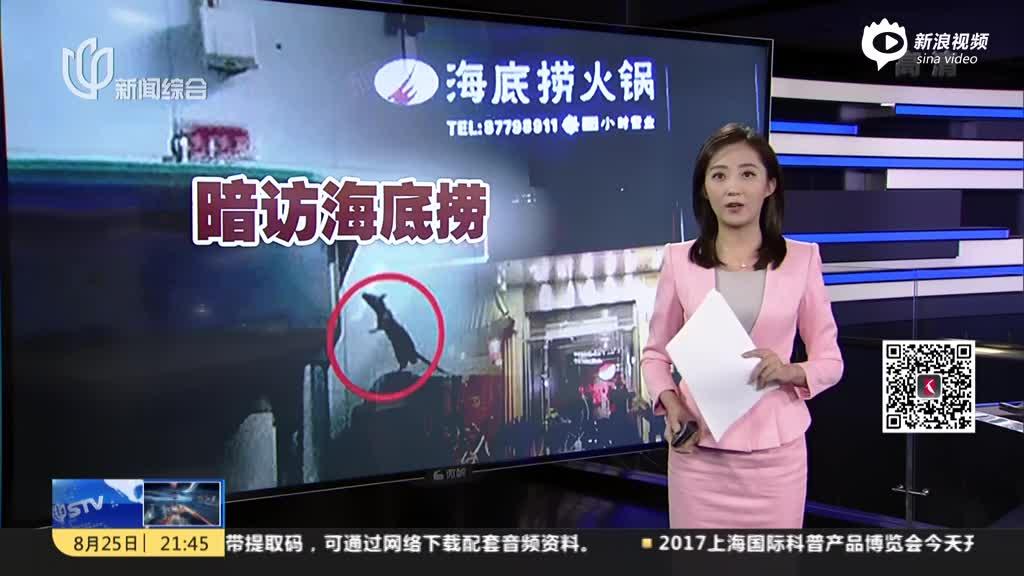 北京:记者暗访海底捞劲松店 后厨老鼠爬进装食品柜子