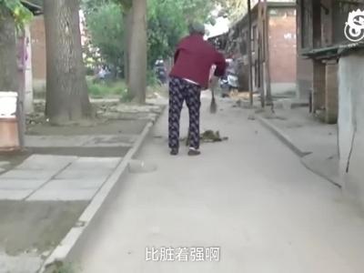 郑州7旬老太拄拐扫路5年