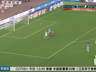 [中超]卡斯特罗献绝杀 贵州智诚胜江苏苏宁(晨报)