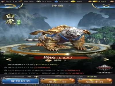 《乱世王者》游戏视频 (3)