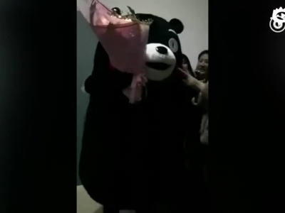 男生扮熊本熊告白 结果女神已有男友