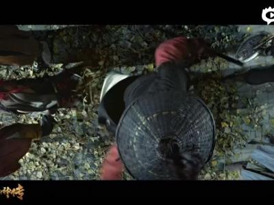《刀剑斗神传》手游同名电影最新预告