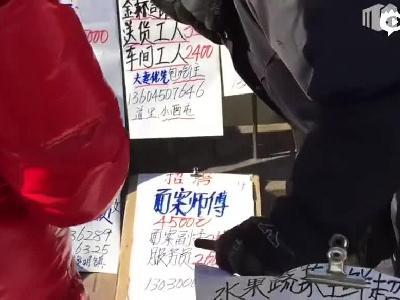 长假后第一天 记者走访哈尔滨求职一条街