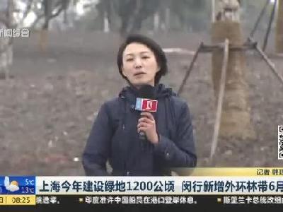 上海今年建设绿地1200公顷  闵行新增外环林带6月开放