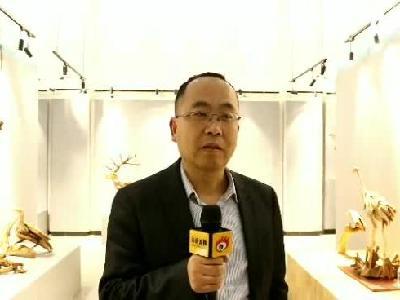 湖南涉外经济学院艺术学院动画系教授杨刚接受采访