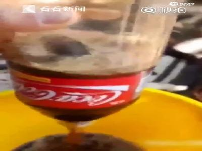 加料不加价?男子喝可乐还未开盖 竟发现整只死鼠漂浮其中