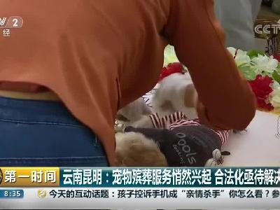 云南昆明:宠物殡葬服务悄然兴起 合法化亟待解决