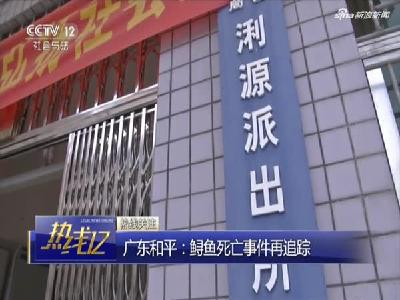 广东和平:鲟鱼死亡事件再追踪
