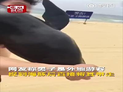 """视频丨在海陵岛沙滩扛走""""伪虎鲸"""" 当事游客将被处理"""