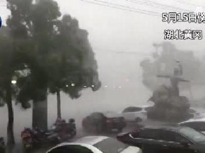 视频:树折车翻!湖北黄冈遭遇狂风暴雨袭击