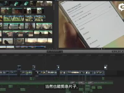 苹果残疾人日宣传视频合集