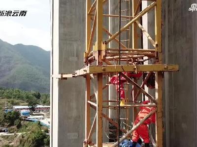 施工现场马蜂成患60余名工人被成功疏散
