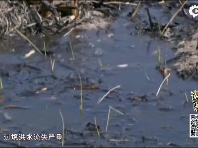 """《好好学习》第23期 探""""醉美""""吉林 访""""河湖连通"""""""