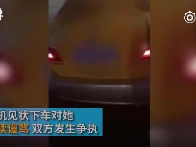 视频:携宠物狗乘出租中途被赶下车,公司:舔了司机