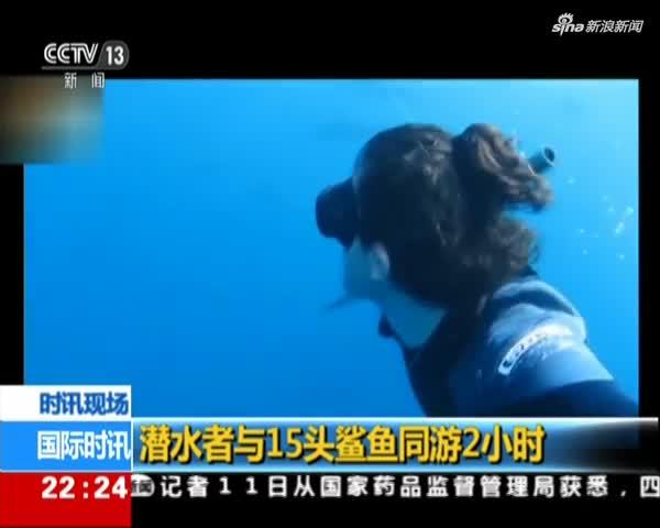 视频:潜水者与15头鲨鱼同游2小时