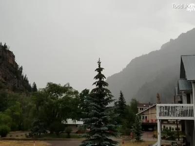 视频:粉身碎骨!美居民院内小树被巨型闪电击中