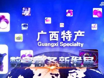 中国-东盟信息港电子商务论坛9月13日举行