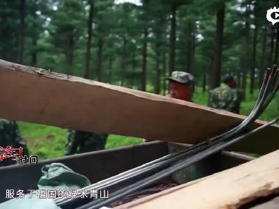 《好好学习》第37课:六十年 三代人 一片林