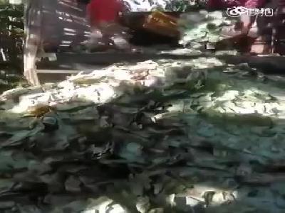 委内瑞拉货币大贬值 孩子在纸币堆中玩耍