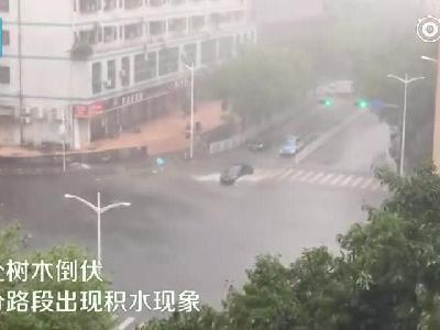 视频-台风来袭:广东深圳雨势明显增强 部分路段内涝