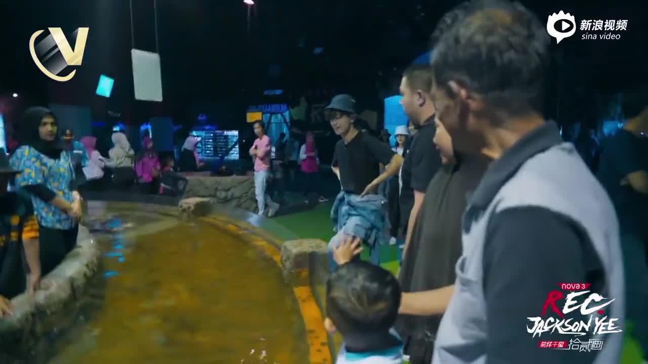 视频:《易烊千玺拾贰画》第三期:海底世界吐槽不停易怼怼