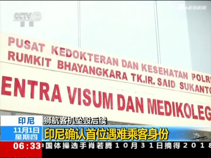 视频|狮航客机坠毁后续——印尼确认首位遇难乘客身