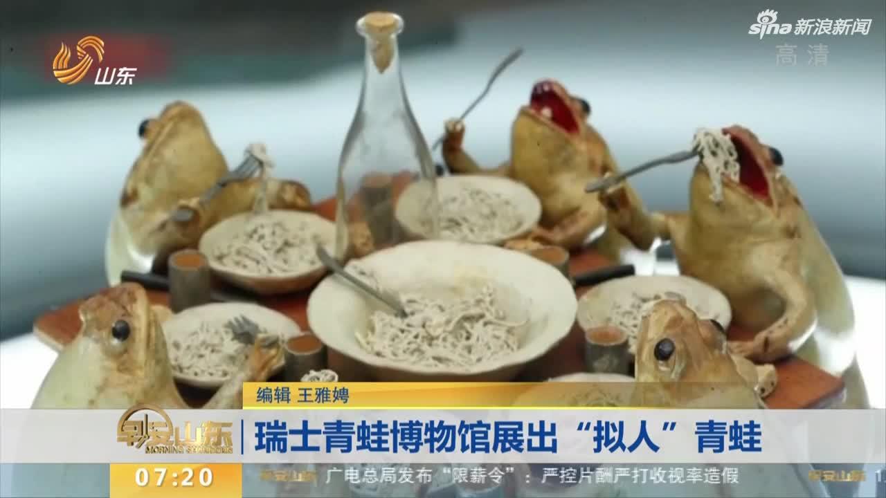 """视频 瑞士青蛙博物馆展出""""拟人""""青蛙"""