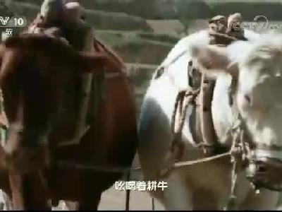 大型电视纪录片《六盘山》第六集:播种